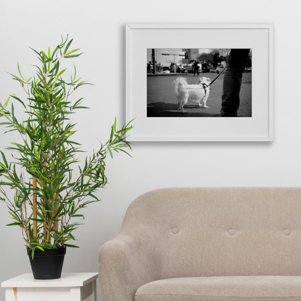 Photography wall art print of Istanbul streets in black and white